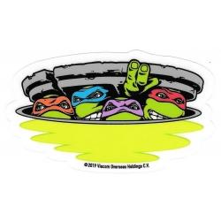 Santa Cruz Teenage Mutant Ninja Turtles - Team sticker