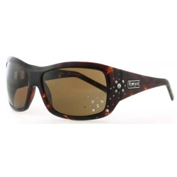 Black Flys Snow Fly Tort/Brn lunettes-de-soleil