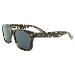 Black Flys Fly Daytona Tort/Smk lunettes-de-soleil