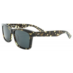 Black Flys Fly Daytona Tort / Smk sunglasses
