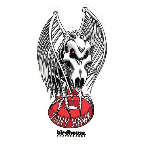 tony hawk skull