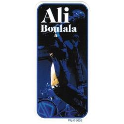 Flip ali boulala guitare sticker