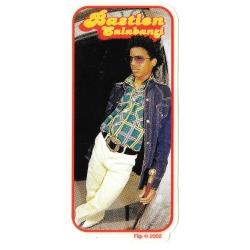 Flip bastien salabanzi 70s sticker