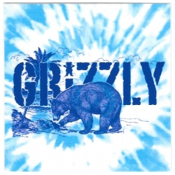 Grizzly Beach tie dye sticker
