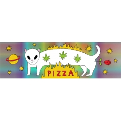 Pizza Space Cat sticker