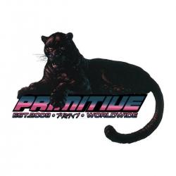 Primitive Black cat accessories